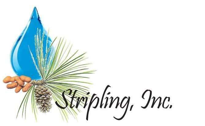 Stripling